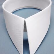 Collar 7